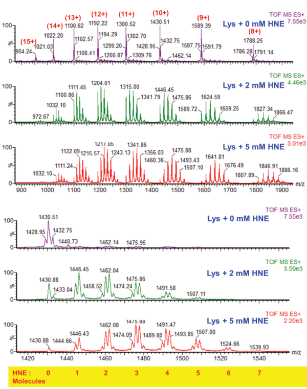Proteomics of the post-translational modifications: the knowns and the unknowns